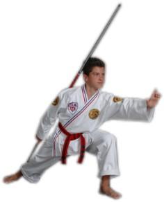 Programs - Karate for Kids, Tiny Tigers, and Taekwondo for